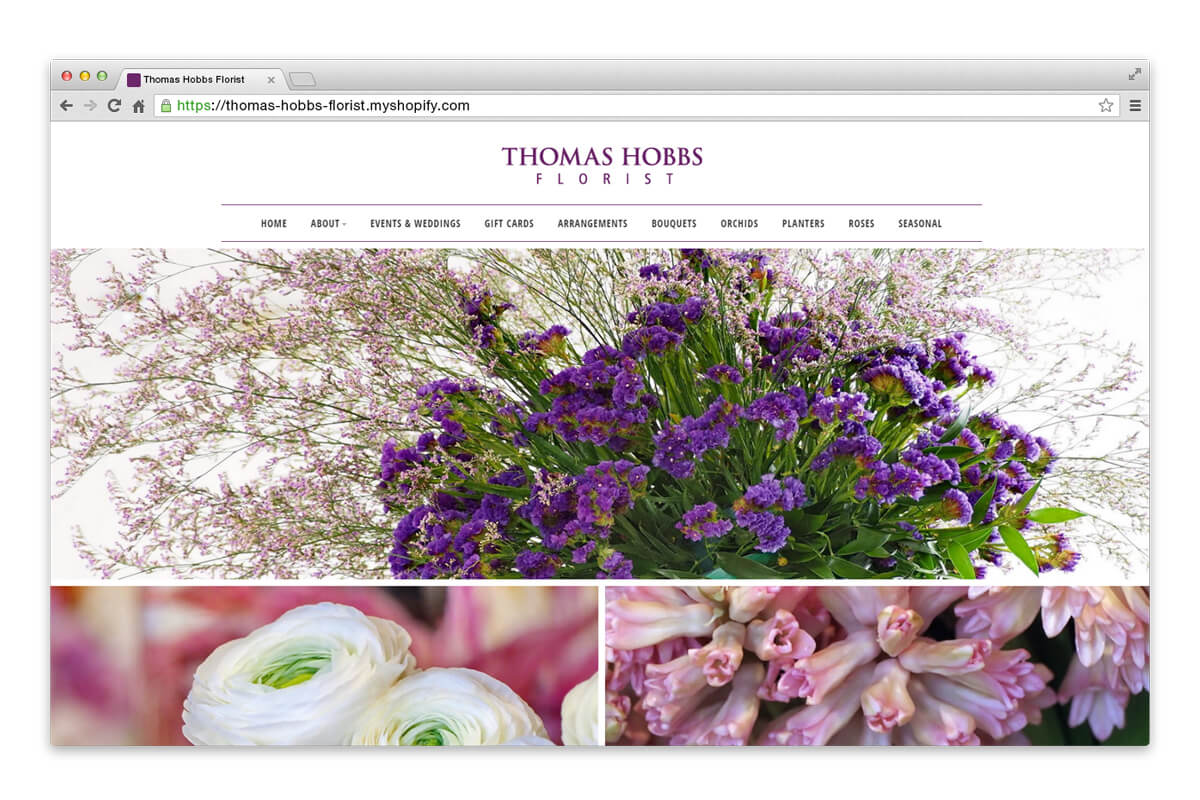 thomas hobbs website page
