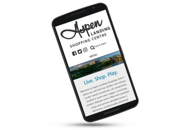 Aspen Landing Shopping Mall website on Nexus phone