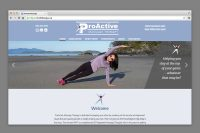 ProActive Massage website